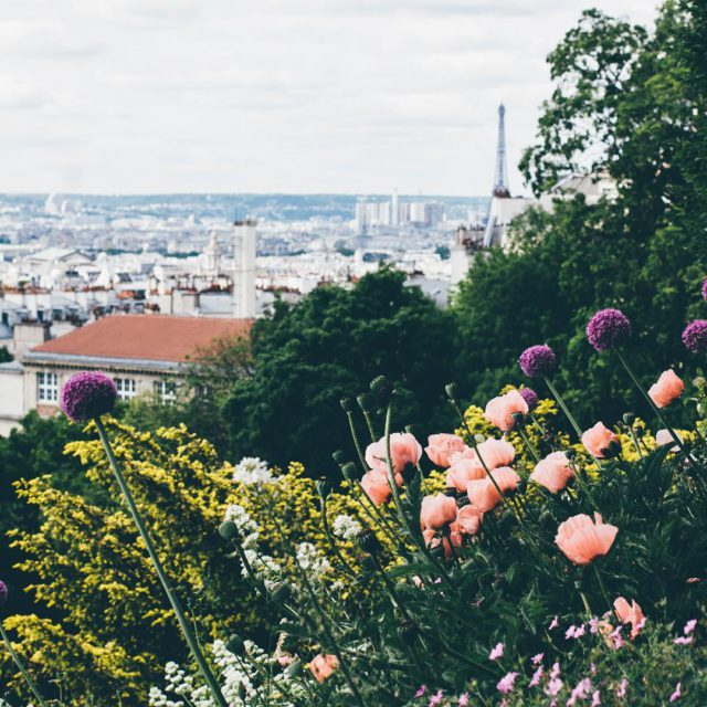 Paris spring 2015 I miss Paris lingwallphotography